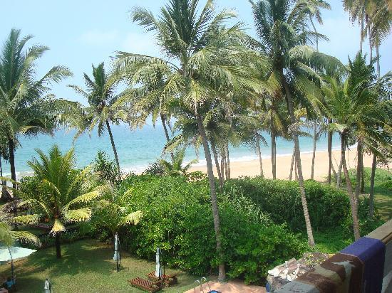 Garden Beach Hotel: lovely view from the room