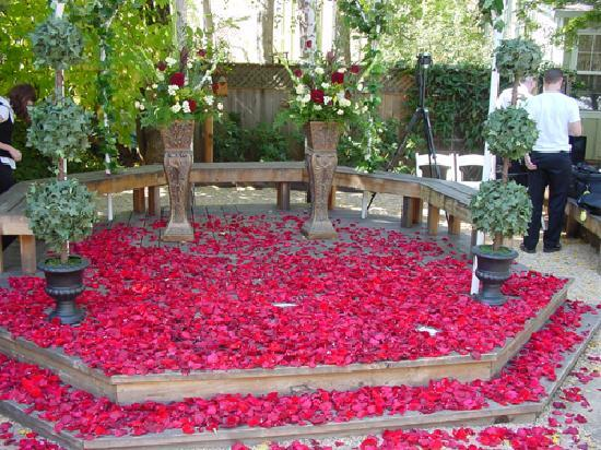 The Seasons Bed and Breakfast: Rose Petals