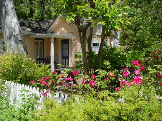 The Seasons Bed and Breakfast: Peach Cottage