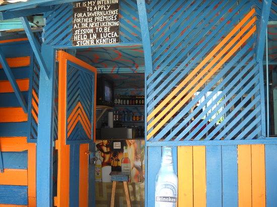 Antsman Tour Jamaica: Fun in Real Jamaica