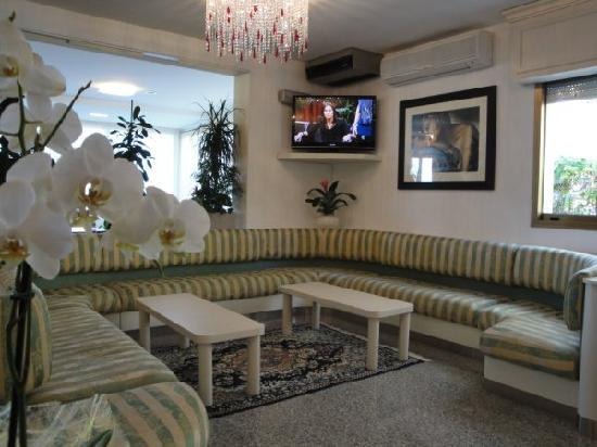 Hotel Orchidea: Sala TV