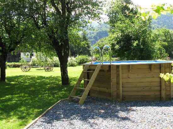 Chalet Beziere: Swimming pool & garden