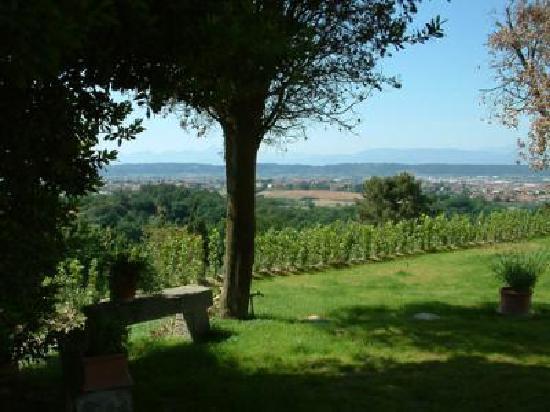 Agriturismo Montalto: Beautiful view of San Miniato