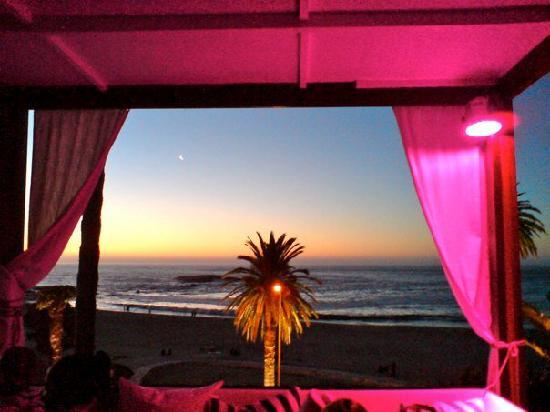 "Camelthorn Lodge: nightclub ""Saint yves""@camps bay"