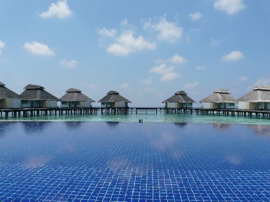 Ellaidhoo Maldives by Cinnamon: la piscine