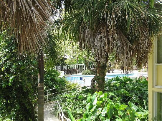 Hotel Indigo Miami Lakes: The inner grounds
