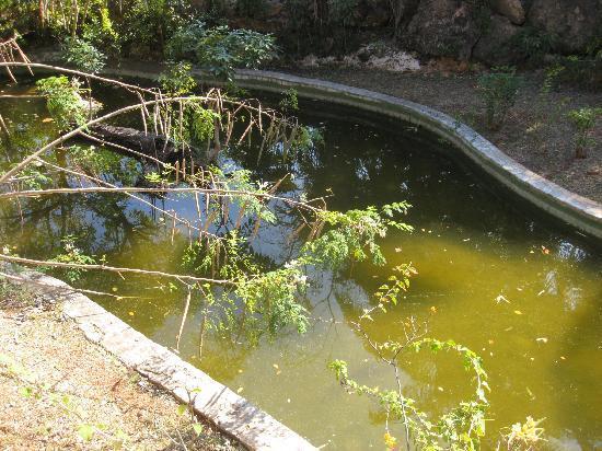 """Brisas del Caribe Hotel: The """"Garden"""""""