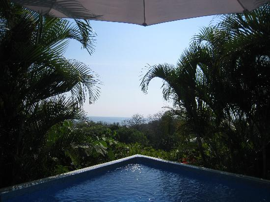 Horizon Ocean View Hotel and Yoga Center: The pool!  And the view from the pool!