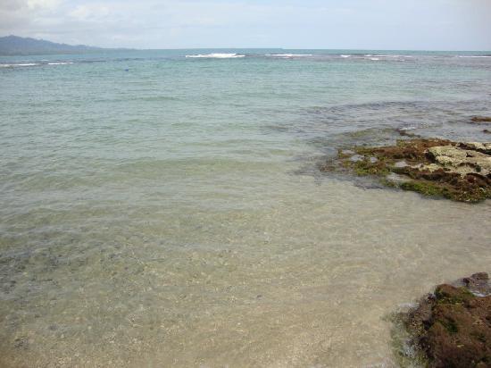 بويرتو بييخو, كوستاريكا: Playa puerto viejo