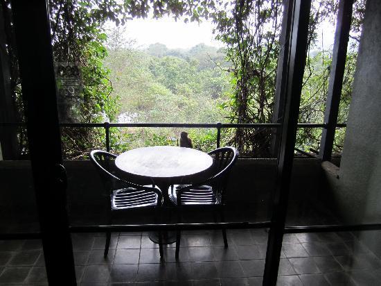 Heritance Kandalama : balcony visitor