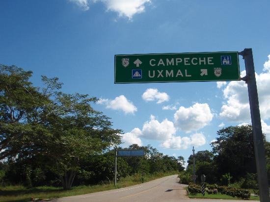 Uxmal, Meksiko: バス乗り場付近◎メリダから来ました⇒まっすぐいくとカンペチェ、斜めに入るとウシュマル