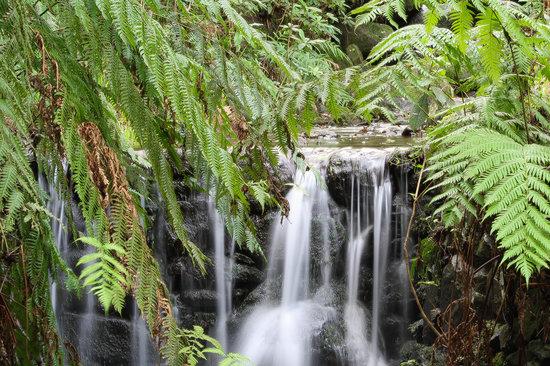 Madeira Adventure Kingdom: Caldeirão Verde