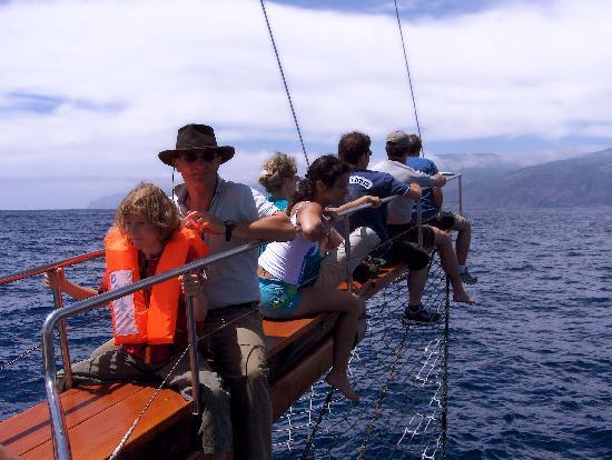 Bonita da Madeira : True Emotions
