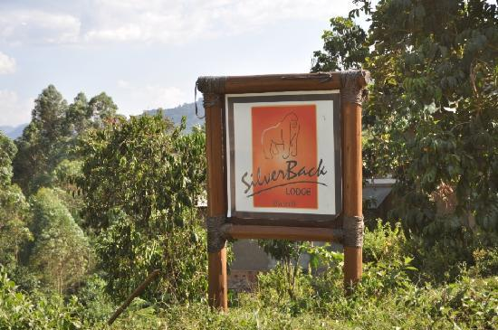 Silverback Lodge: The sign for the lodge