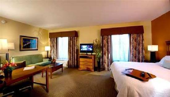 Hampton Inn Okeechobee - Lake Okeechobee: Hotel Room