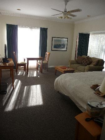 Comfort Inn The International: The room