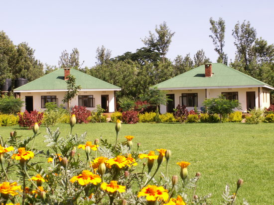 Karatu, Tanzania: Cottages in the garden