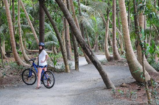 The St. Regis Bahia Beach Resort: biking through the nature trails