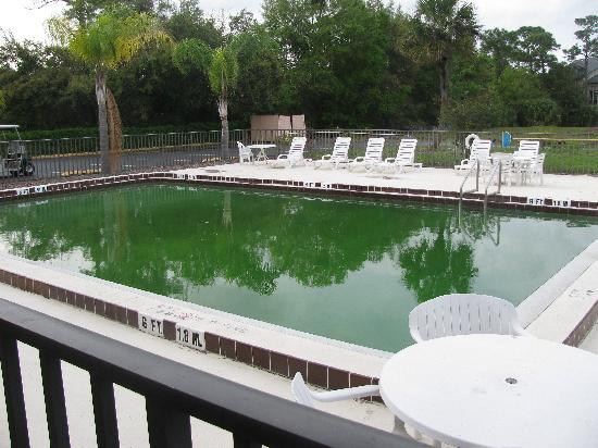 Days Inn Kissimmee West: The pool outside, green with moss on sides!