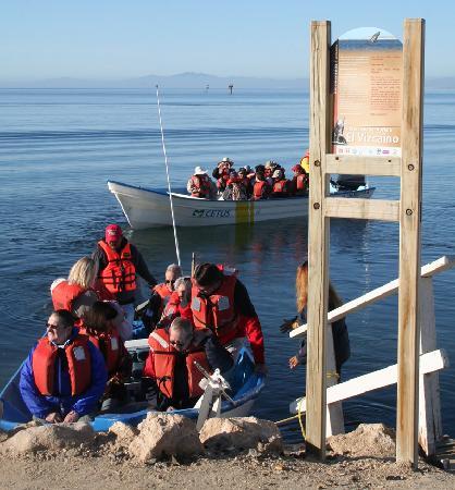 Guerrero Negro, Mexico: ya de regreso