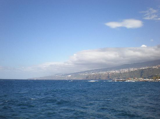 Puerto de la Cruz, Spain: Blick vom Hafen nach Osten