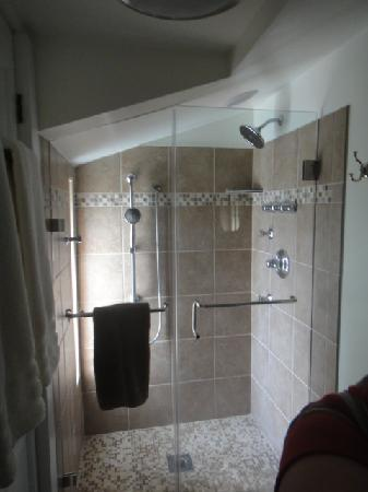 Foster Harris House B&B: This shower was a few in front of the toilet/sink. The bathroom was as wide as this shower.