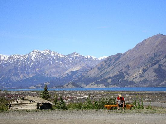 Haines Junction, Canadá: The view from our cabin unit.