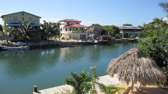 Three Iguanas Villa: A view from the balcony.