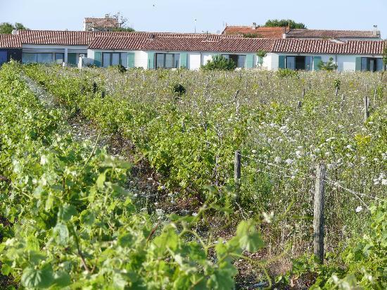 Les Vignes de la Chapelle : l'hotel vu depuis la mer