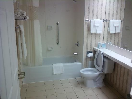 Hampton Inn by Hilton Ottawa : Bathroom - Room 210