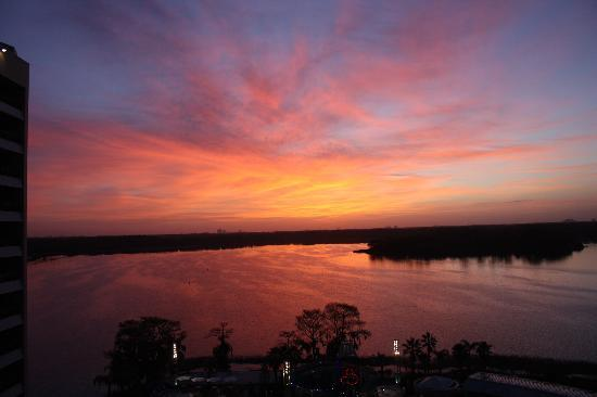 Bay Lake Tower at Disney's Contemporary Resort: Sunrise from our room.