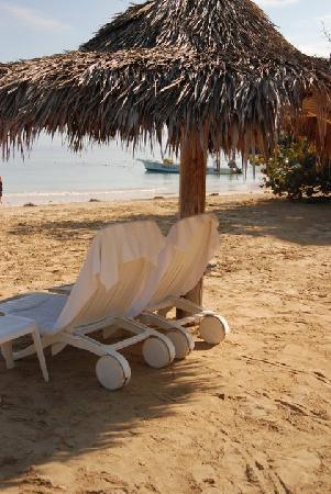 Couples Sans Souci: pretty sceen of our beach chairs on the beach : ocho beach chairs - Cheerinfomania.Com