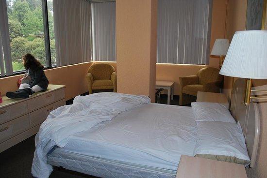 Stanford Suites Hotel : habitación principal grande
