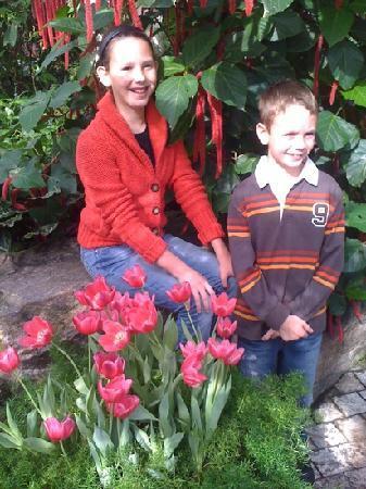 Niagara Parks Sommerfuglobservatorium: tranquility in the gardens