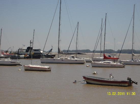 Patrimonio: mas veleros