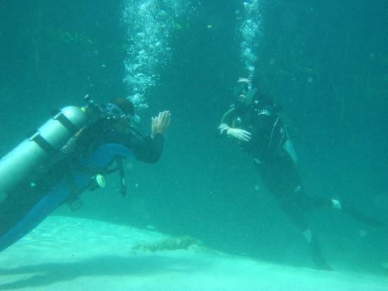 Scuba S.cool Diving Center: Ejercicios de flotabilidad.