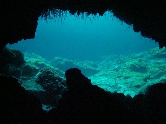 Scuba S.cool Diving Center: Interior cueva.