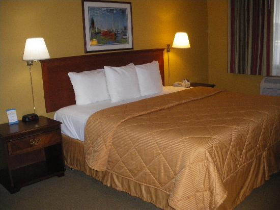 Comfort Inn & Suites Seattle: Bedroom