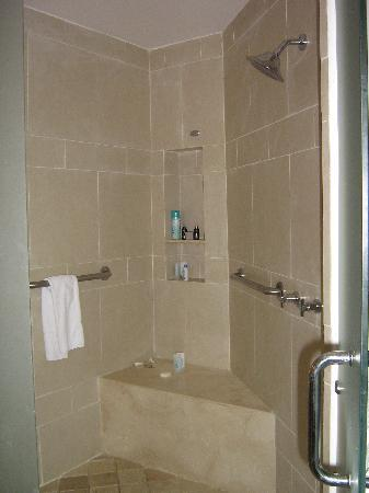 Hard Rock Hotel U0026 Casino Punta Cana: Double Walk In Shower