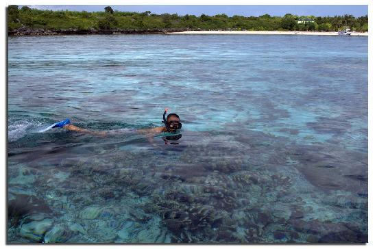 snorkeling spot at liukang island near the bira beach