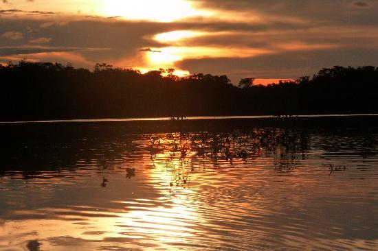 Amazon River, AM: Sunset on the Amazon