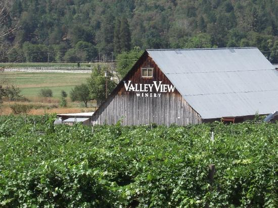 Valley View Winery: The winery