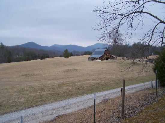 Pioneer Cabins & Guest Farm: Beautiful view