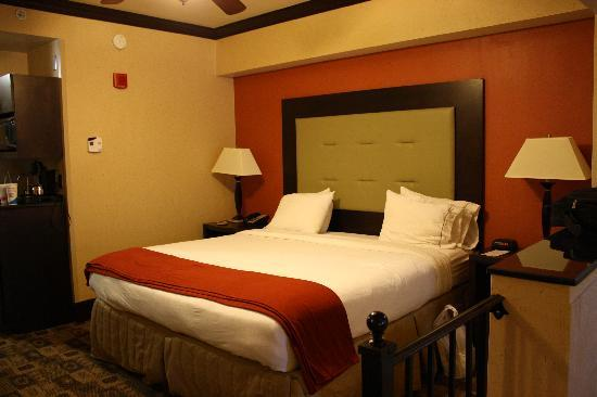 Holiday Inn Express Hotel & Suites Columbia-Fort Jackson: King bed