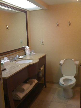 Hampton Inn Sarasota I-75 Bee Ridge: Bathroom