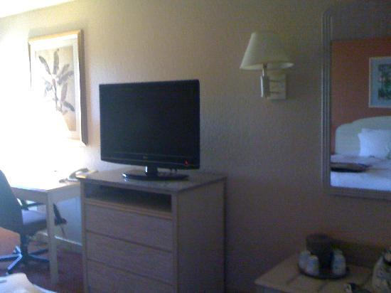 Hampton Inn Sarasota I-75 Bee Ridge: TV