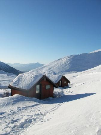 Hatcher Pass Lodge : The remote private cabins #8 and #9