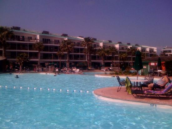 Port Royal Ocean Resort & Conference Center : The Pool