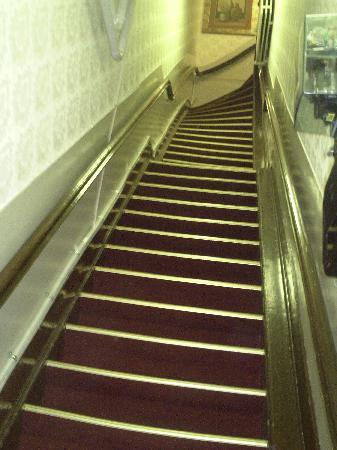 Hotel de Westertoren: Escalier impressionnant en entrant
