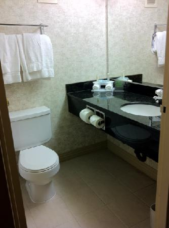 Holiday Inn Express San Francisco Airport South: Clean, updated bathroom